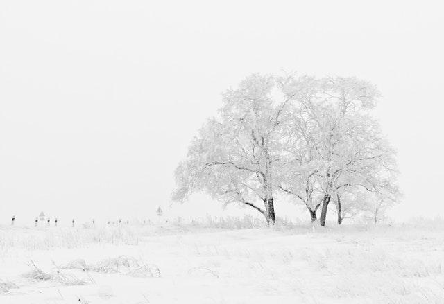 Chłodna Zima